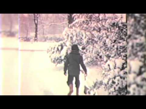 Christmas Song - Raveonettes (Cover)
