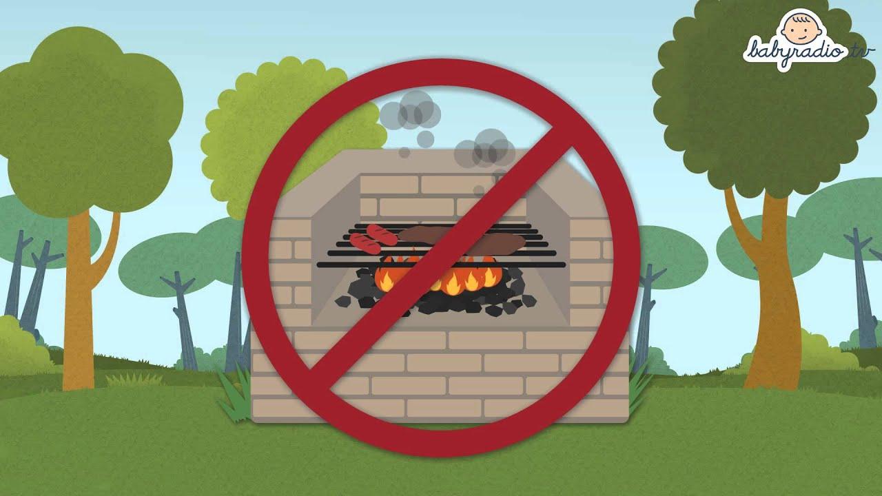 C mo evitar incendios consejos ecol gicos para ni os for Materiales para un vivero forestal