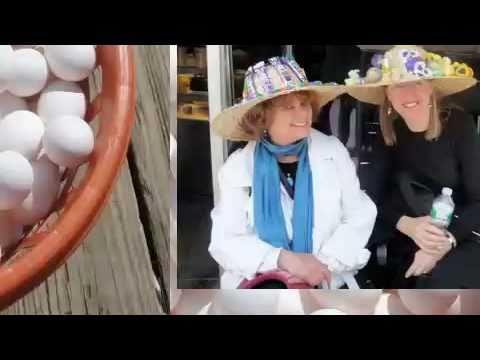 Egg Olympics on Spring Equinox by Carmela Tal Baro...