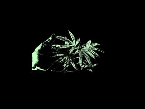 FILASTOX. - Weed Problem [Bull of Heaven Cover]