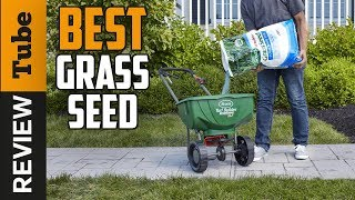 Grass Seed - ✅Grass Seed: Best Grass Seed 2019 (Buying Guide)