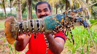 FISHERMAN LOBSTER COOKING   Big Lobster Recipe   World Food Tube