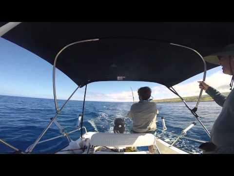 Fishing and Diving Kawaihae, HI on 10 June 2014