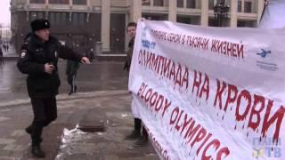 Акция защитников животных против Олимпиады в Сочи