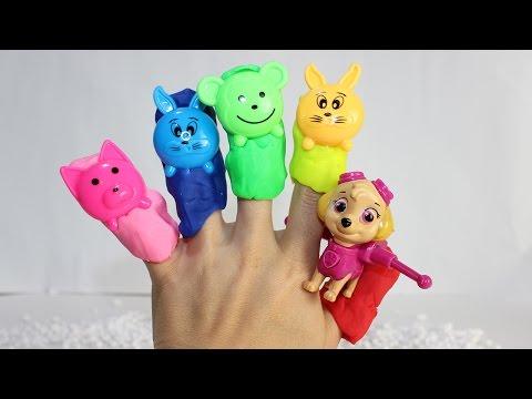Видео: пальчиков|