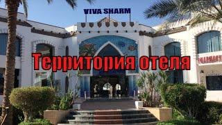 видео VIVA SHARM HOTEL 3*, Египет - фото и отзывы об отеле