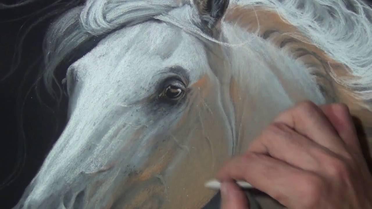 Wip Desenhando Um Cavalo Realista Speed Drawing Curso De