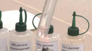 Реакция альдегидов и кетонов с гидроксидом диамминсеребра (I). Опыт 1