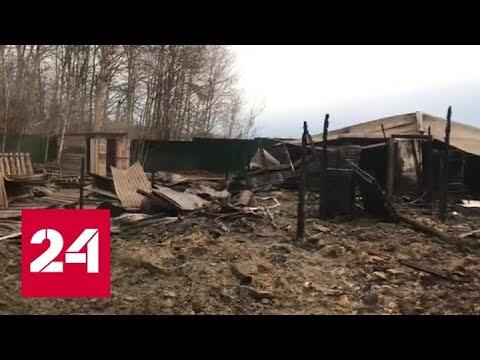 Возросло количество погибших при пожаре в Подмосковье - Россия 24