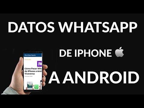 Cómo Pasar WhatsApp de iPhone a Android y Viceversa