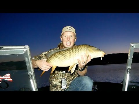 Night Fishing Colorado Fall Walleye - 2017 *SURPRISING*