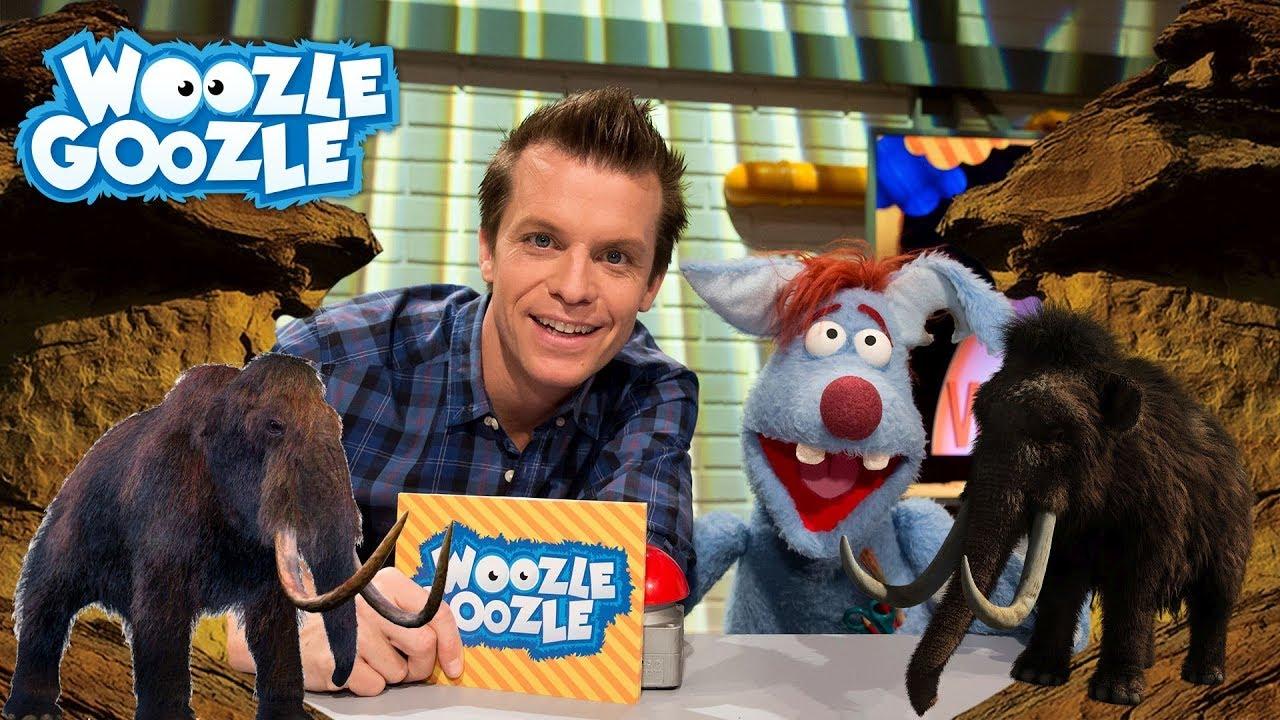 Woozle Goozle App