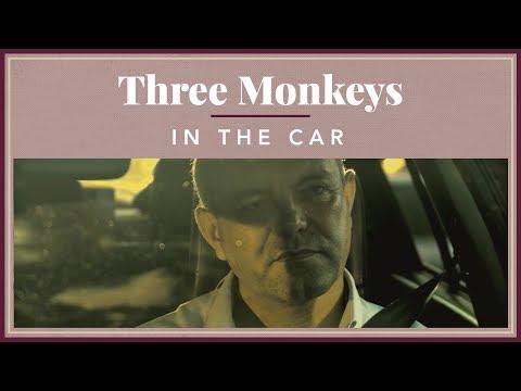 Three Monkeys - In The Car