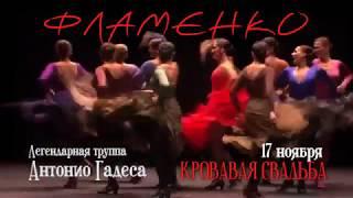Фламенко - легендарная труппа Антонио Гадеса в БКЗ