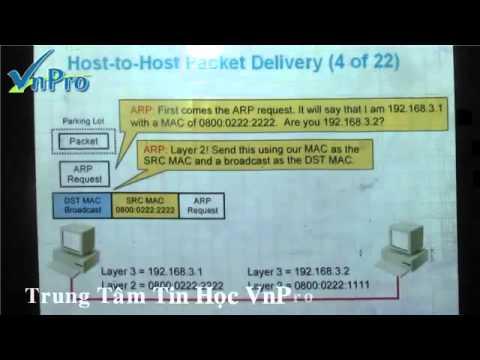 [Bài giảng CCNA 13] - Bài Giảng ARP ( Address Resolution Protocol)