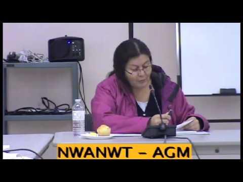 NWANWT Constitution 01