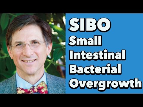 Small Intestinal Bacterial Overgrowth (SIBO) w/ Dr. Steven Sandberg-Lewis