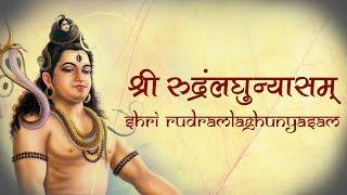 Shri Rudram Laghunyasam   Vedic Hymns by 21 brahmins