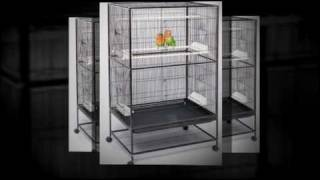 Large Parrot Birdcages - Quality Play Stands - Travel Aviary