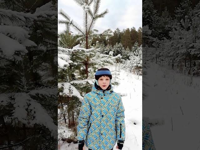 Изображение предпросмотра прочтения – СавелийКунгурцев читает произведение «В этот лес завороженный...» С.А.Есенина