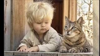 ЗАБАВНЫЕ И МИЛЫЕ (прикольные фото детей и домашних животных)...