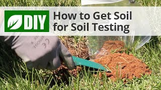 How to Take A Soil Sample for Soil Testing