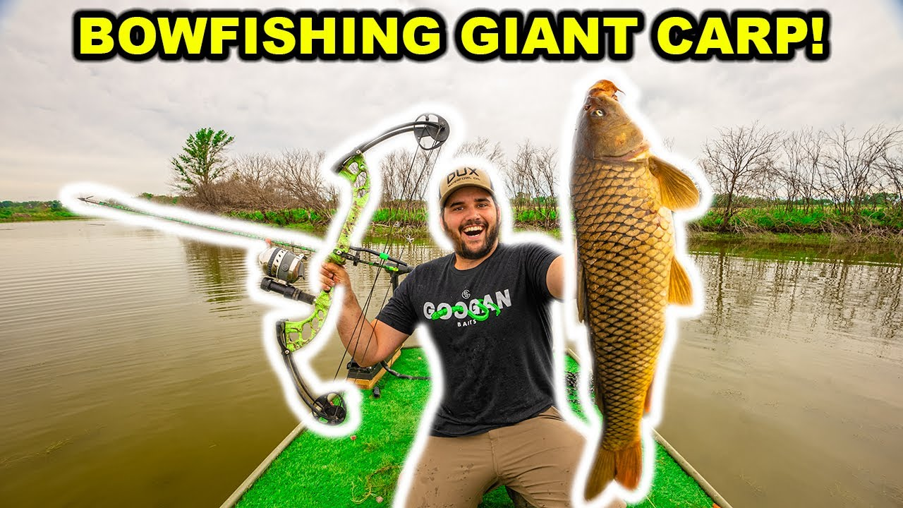 BOWFISHING My Farm for GIANT CARP for the FIRST TIME!!! (Catch Clean Cook)