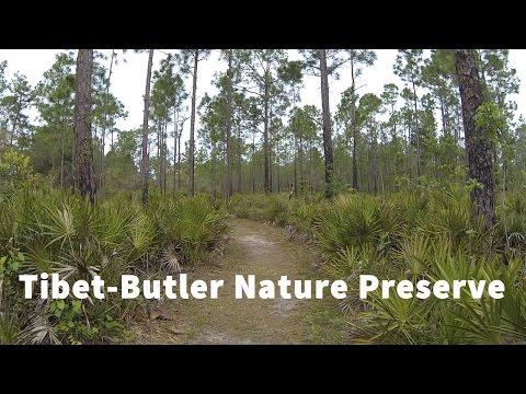 Tibet-Butler Nature Preserve Virtual Run, Orlando Florida