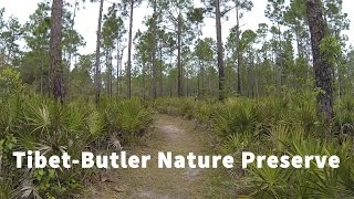 Tibet-Butler Nature Preserve Virtual Run, Orlando Florida