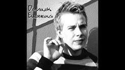 Dominik Eulberg - Björn Borkenkäfer (Original mix)