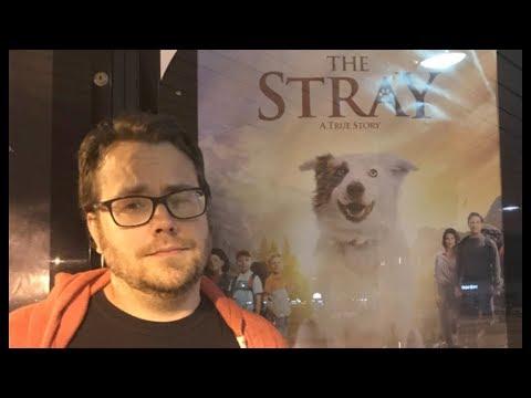 Midnight Screenings - The Stray