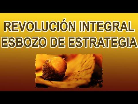 REVOLUCIÓN INTEGRAL. ESBOZO DE ESTRATEGIA