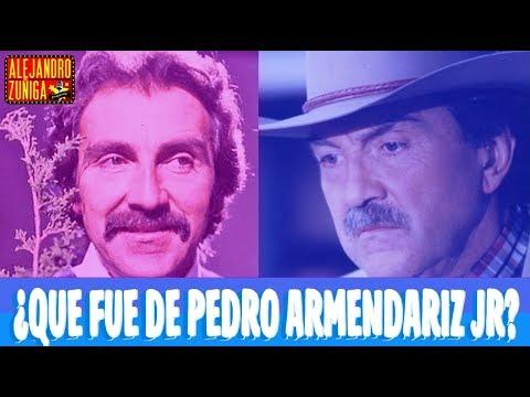 QUE FUE DE PEDRO ARMENDÁRIZ JR