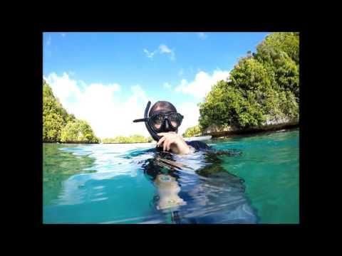 WW2 Japanese Plane Wreck - Palau - 2015