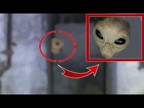 Инопланетянина Сняли На Камеру! Реальное Видео Пришельца