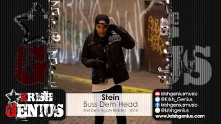 Stein - Buss Dem Head [Wul Dem Again Riddim] November 2014