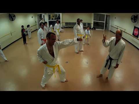 Karate Class 1-23-18