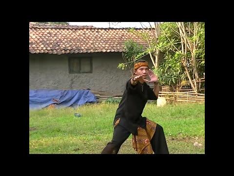Buah Kawung Karna