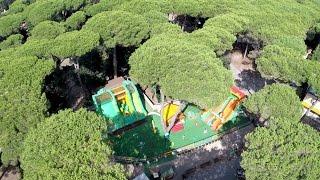 Island Games - Marina di Castagneto Carducci