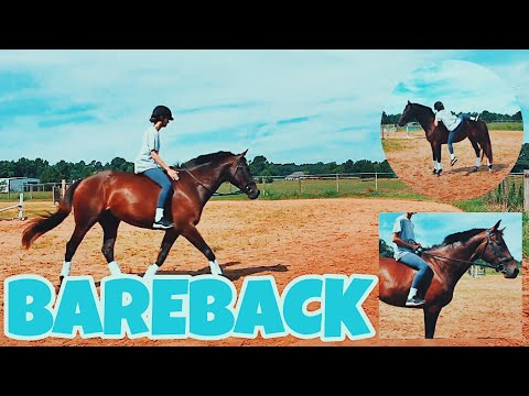 HOW TO BAREBACK mounting, riding & jumping