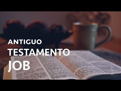 Antiguo testamento 11: Job - Javier Julve