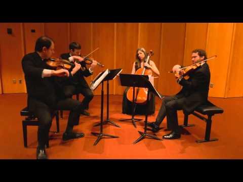 Borodin String Quartet No. 2 - I. Allegro (Kontras Quartet)