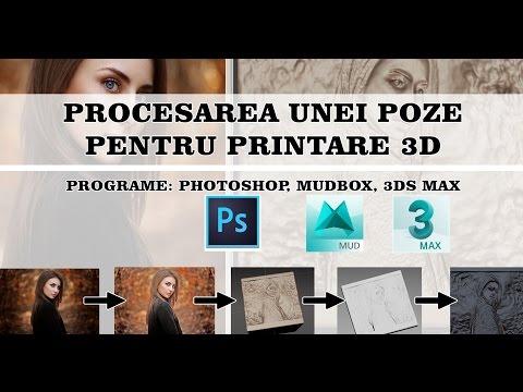 Procesarea unei poze pentru printare 3D