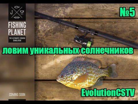 Fishing planet как сделать меч в майнкрафт - 5e09