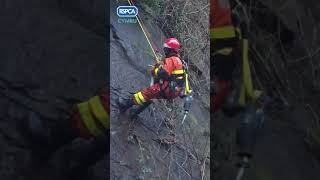 Dog Rescued From Cliff After Earthquake in Swansea