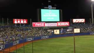 Tokyo Yakult Swallows Theme