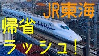 帰省ラッシュ! 東海道新幹線通過 住宅街を走る! in 横浜市港北区~Tokaido SHINKANSEN streat run in Yokohama~