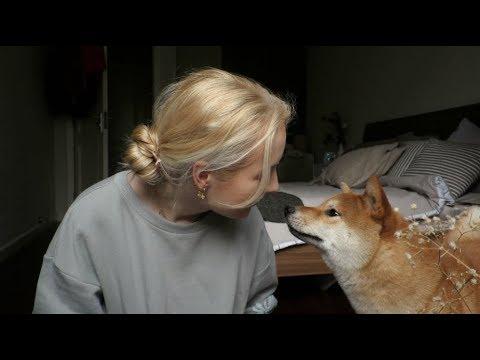 China vlog, days 3-6: MY FIRST KARAOKE EXPERIENCE!