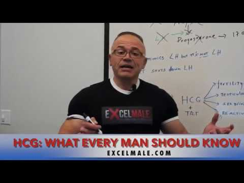 Men's Guide to HCG