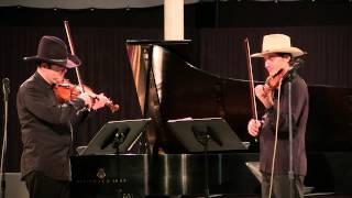 Violin (Musical Instrument)